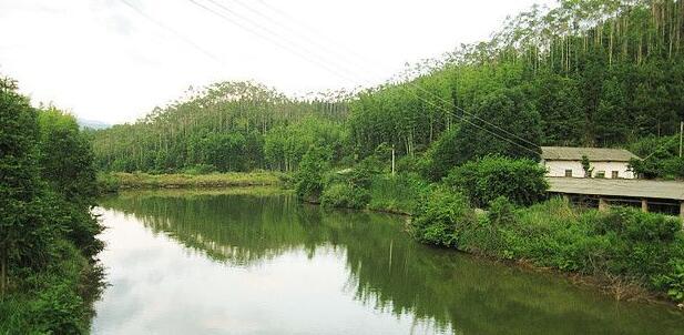 广东省韶关市翁源县430亩设施农用地转让
