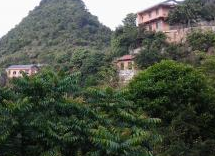 广东省清远市300亩其他园地出售