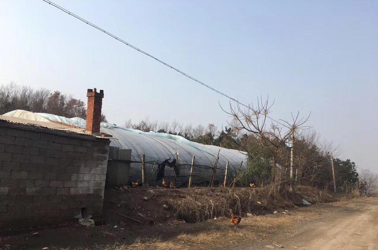滁州市明光市地�_安徽省滁州市明光市500亩其他土地出租-聚土网